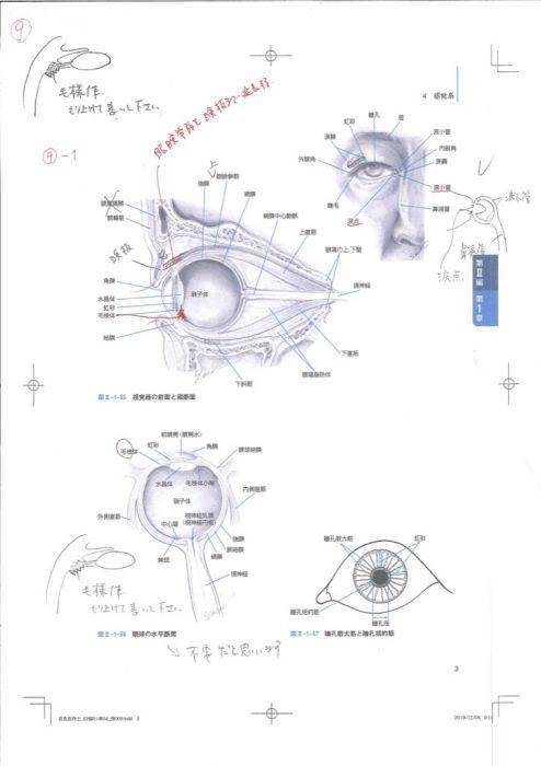 眼球の解剖